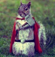 Armored Squirrel